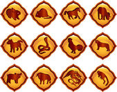 Chinese astrology — Stock Vector