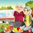 Senior couple camping — Stock Vector