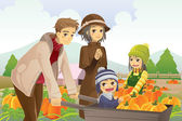 Family doing pumpkin patch — Stockvector