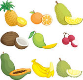 Tropical fruits icons — Stock Vector