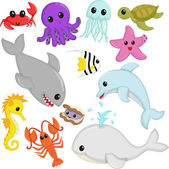 Marine wildlife animals — Stock Vector