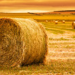 Stock Photo: Hay Bale Farm
