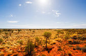 Australian Outback Landscape — Stock Photo