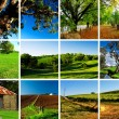 Royalty-Free Stock Photo: Adelaide Hills Montage