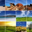 South Australia Montage — Stock Photo