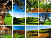 Adelaide Hills Montage — Stock Photo