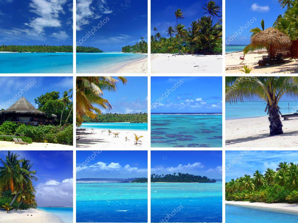 Фотообои Tropical Montage