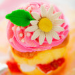 A two layer cupcake with pink and white buttercream sugar flower - Stock Photo