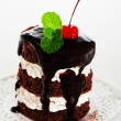 A small chocolate cake with 2 layer white cream, cherry and mint — Stock Photo #9405949
