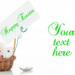 A small basket with eggs and a label for your text on white bacx — Stockfoto