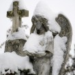 Close up of a stone angel statue covered with snow — Stock Photo