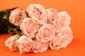 Härliga rosor — Stockfoto