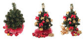 Set of christmas trees — Stock Photo