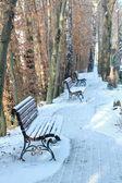 Zimní den venkovní — Stock fotografie