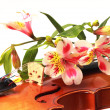 Flowers and violin — Stock Photo #8518849
