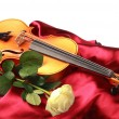 Stock Photo: Fresh rose and violin