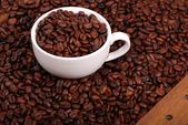 Dark coffee beans — Stock Photo