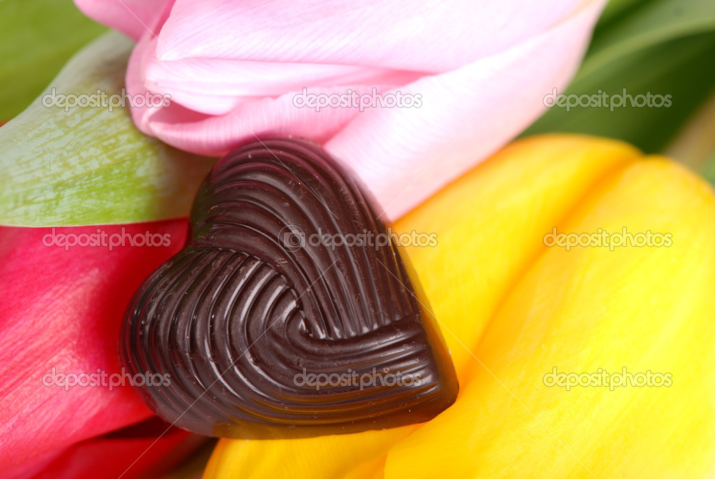 Sweet chocolate as a heart symbol with lovely pink rose on a Valentine's Day with space for your special text  Stock Photo #8807625