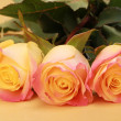 Some roses — Stock Photo #9333692