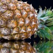 Ripe pineapple with reflection — Foto de Stock