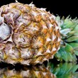 Ripe pineapple with reflection — Stock Photo #10348374