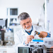 Senior male researcher carrying out scientific research in a lab — Stock Photo #10408125
