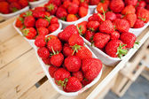 Farmers market series - fresh strawberries — Stock Photo