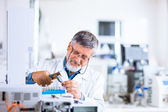 Senior male researcher carrying out scientific research in a lab — Stockfoto