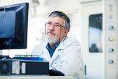 Senior researcher using a computer in the lab — Stock Photo