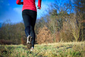 Jogging outdoors in a meadow — Stock Photo