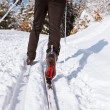 Cross-country skiing: young man cross-country skiing - 图库照片