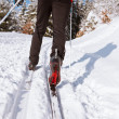 Cross-country skiing: young man cross-country skiing - Foto Stock