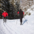 Cross-country skiing: young man cross-country skiing — Stock Photo #7998570