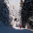 Cross-country skiing: young man cross-country skiing - Stock Photo