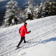 Cross-country skiing: young man cross-country skiing - Foto de Stock  