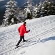 Cross-country skiing: young man cross-country skiing - Stockfoto