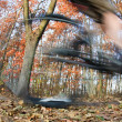 Bicycle riding in a city park on a lovely autumn/fall day - Stockfoto