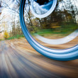 Bicycle riding in a city park on a lovely autumn/fall day — Stock Photo #8279952