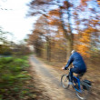 Bicycle riding in a city park on a lovely autumn/fall day - Stock Photo