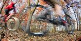Cykel ridning i en park på en härlig höst/höst dag — Stockfoto
