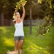 Young woman picking apples from an apple tree — Stock Photo