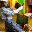 Beekeeper by an apiary observing carefully his bees — Stock Photo