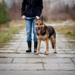 Master and her obedient dog — Stock Photo #8874351