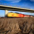 Fast train passing under a bridge on a lovely summer day — Stock Photo #8874405