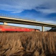 fast train passing under a bridge on a lovely summer day — Stock Photo