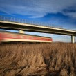 Stock Photo: fast train passing under a bridge on a lovely summer day