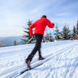 Постер, плакат: Cross country skiing: young man cross country skiing