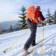 Cross-country skiing: young man cross-country skiing — Stock Photo #9115371