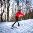 Cross-country skiing: young man cross-country skiing — Stock Photo #9115378