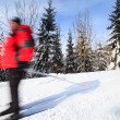 Cross-country skiing: young man cross-country skiing — Stock Photo #9115399